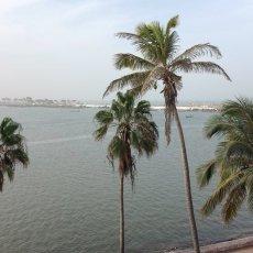 Depuis la terrasse du CRDS, le fleuve Sénégal... © Arnaud Galy - Agora francophone internationale