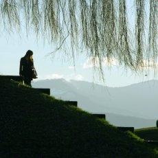 SUISSE - Des villes, de l'eau et des montagnes...